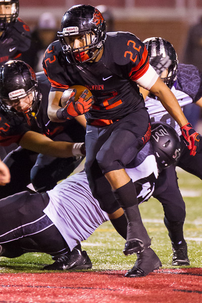 20141121 Palmview v Weslaco East Playoff Football 025.jpg