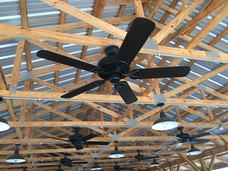 Ceiling fans may help with the heat of Field Day.