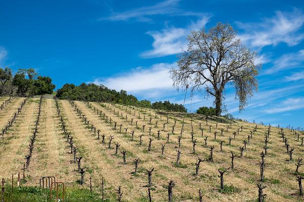 Paso Robles wine trip April 2017