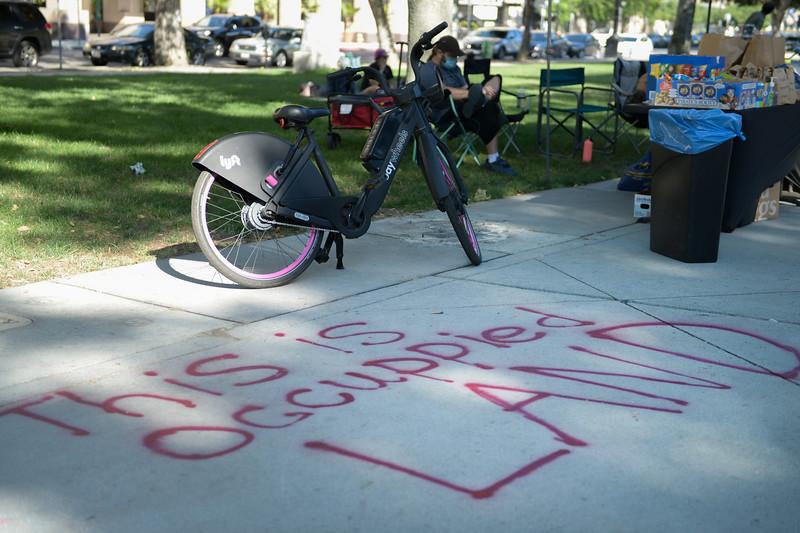 """Art in the Park"" Resistance Through Art & Music"