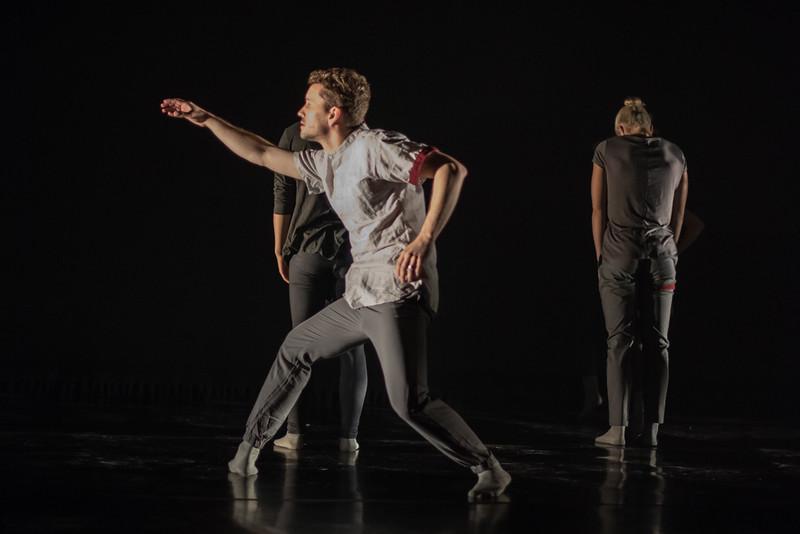 170714 New Dances 2017 (Photo by Johnny Nevin)_032.jpg