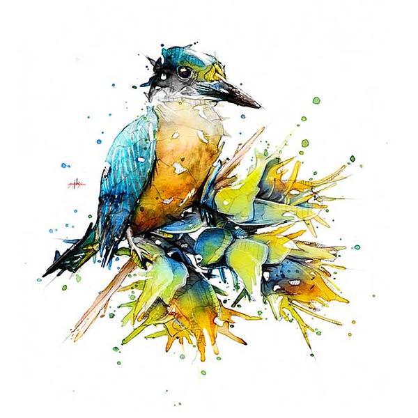 nz-bird-3.jpg
