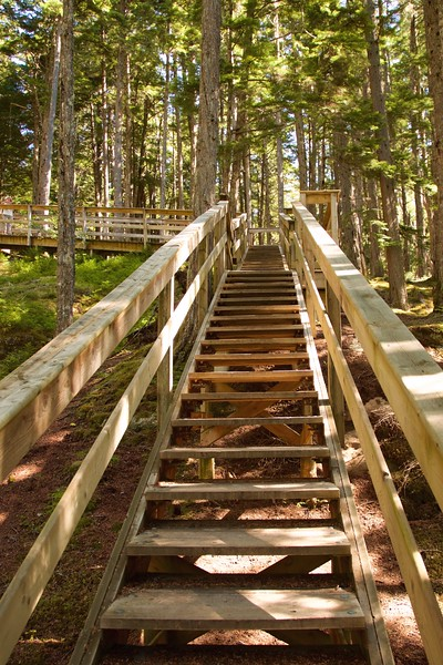 Stairs to Skeena River