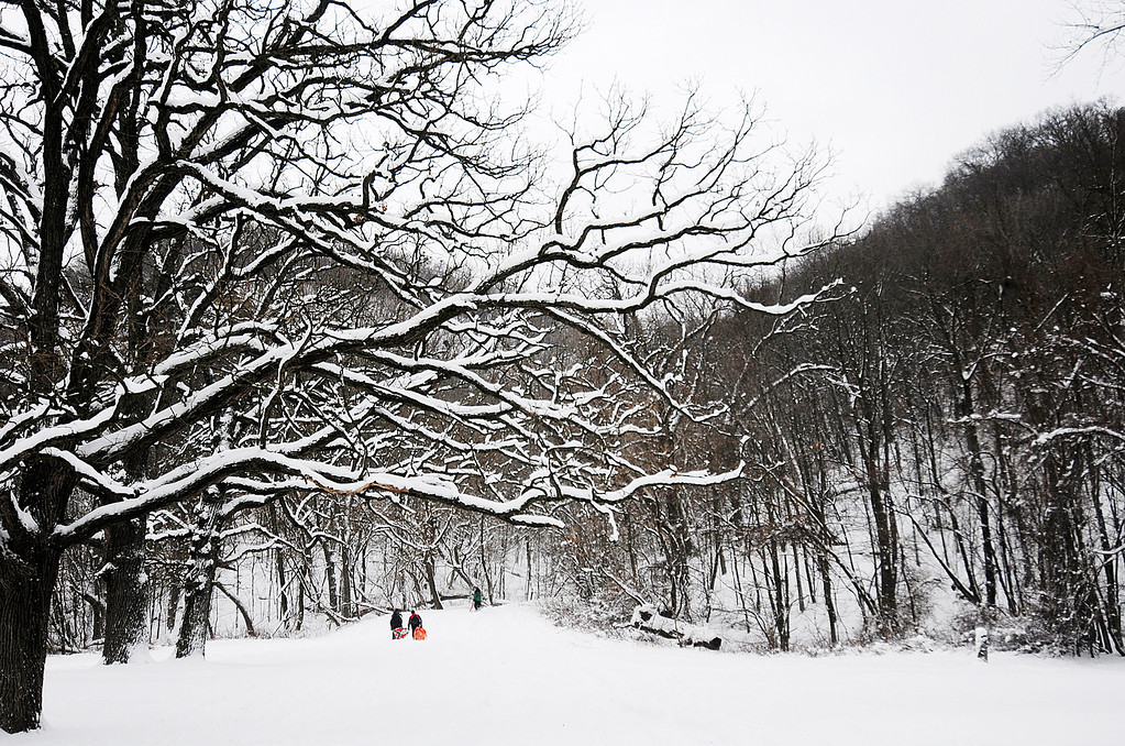 . Children make their way up the hill at Bluffside Park while sledding Thursday, Dec. 20, 2012, in Winona, Minn. (AP Photo/Winona Daily News, Joe Ahlquist)