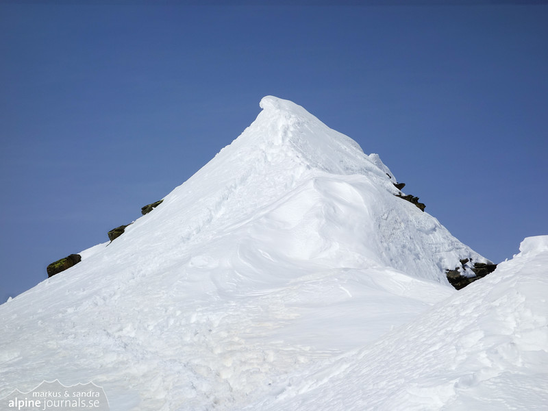 The summit of Signalhorn seems close, but this is actually just the snow ridge before the rock ridge before the summit.