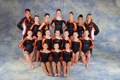 Team 2014 -  Xcel Gold
