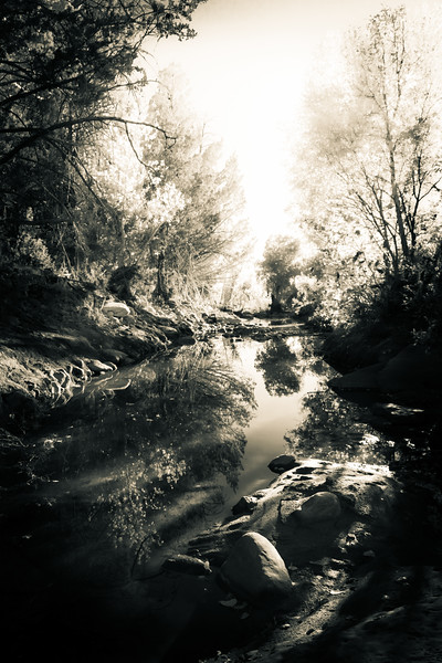 Dreamlike Creek in A Forest