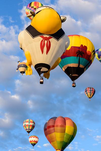 SpecialShapeRodeo_ABQ_BalloonFiesta-6.jpg