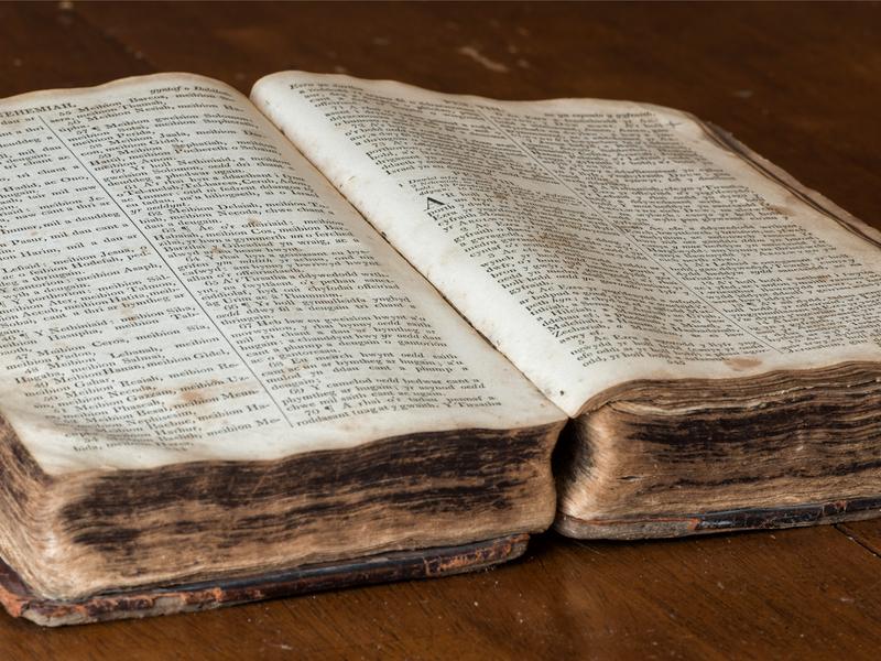 SAPhoto-Bible-4x3-2.png