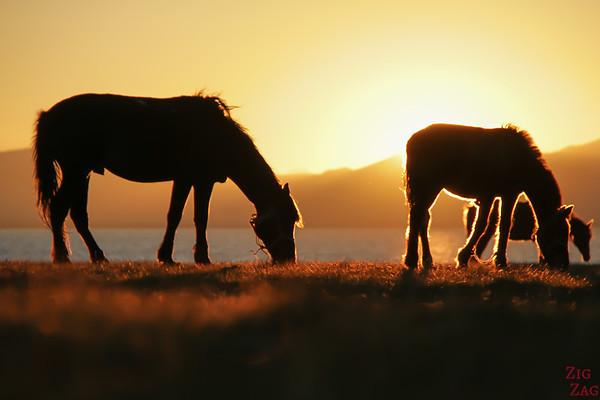 Peaceful Kyrgyzstan