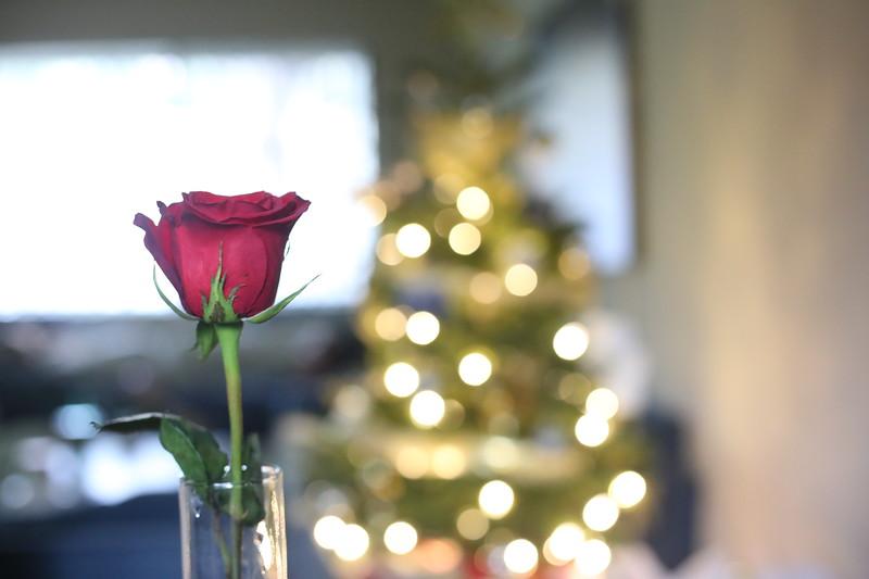 2019-12-22_ChristmasDecor-4461.JPG