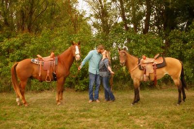 Brook - Horses & Their Humans