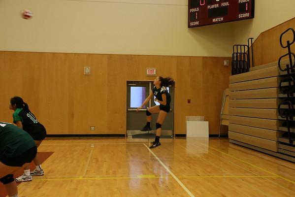 Volleyball 2016