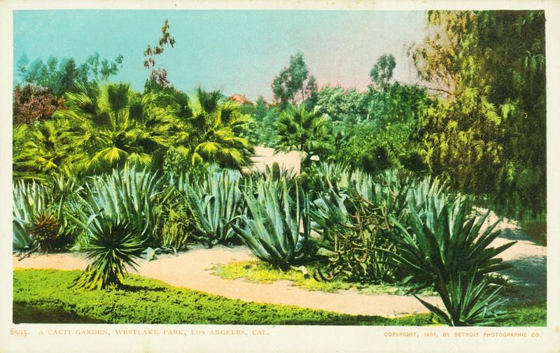 Westlake Park Cacti Garden