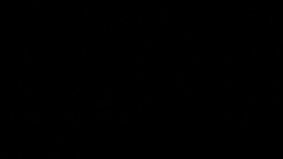 BONAIRE MONDAY BONUS VIDEO