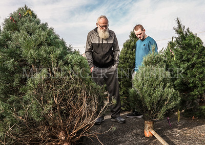 Christmas tree shopping - 12-4-19 - Messenger-Inquirer