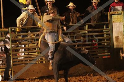 Bulls and Barrels Feb. 2012