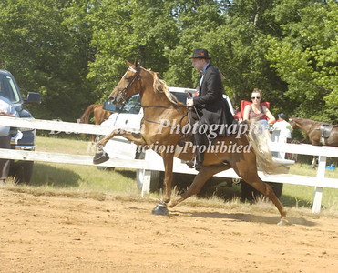 CLASS 5  AMATEUR OWNED AND TRAINED SPEC