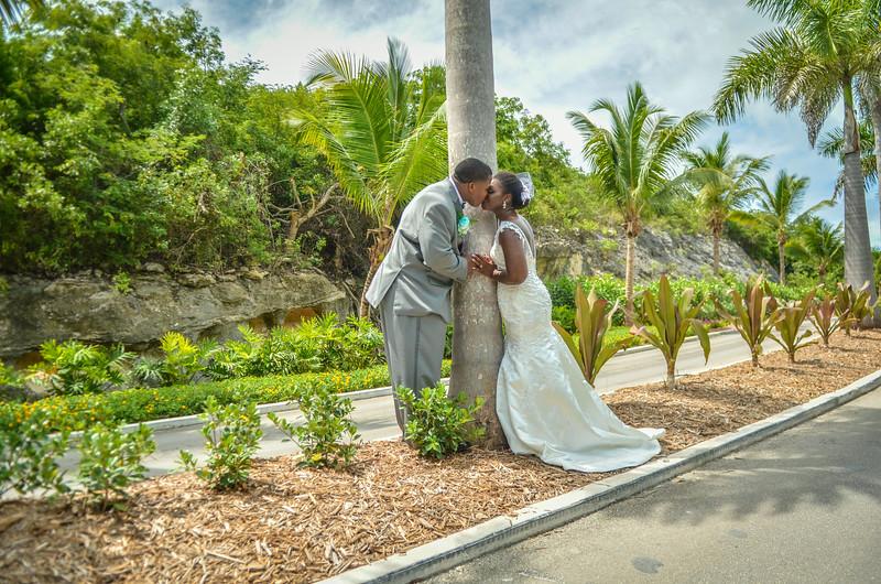 Gaileyn & Gareth's Wedding