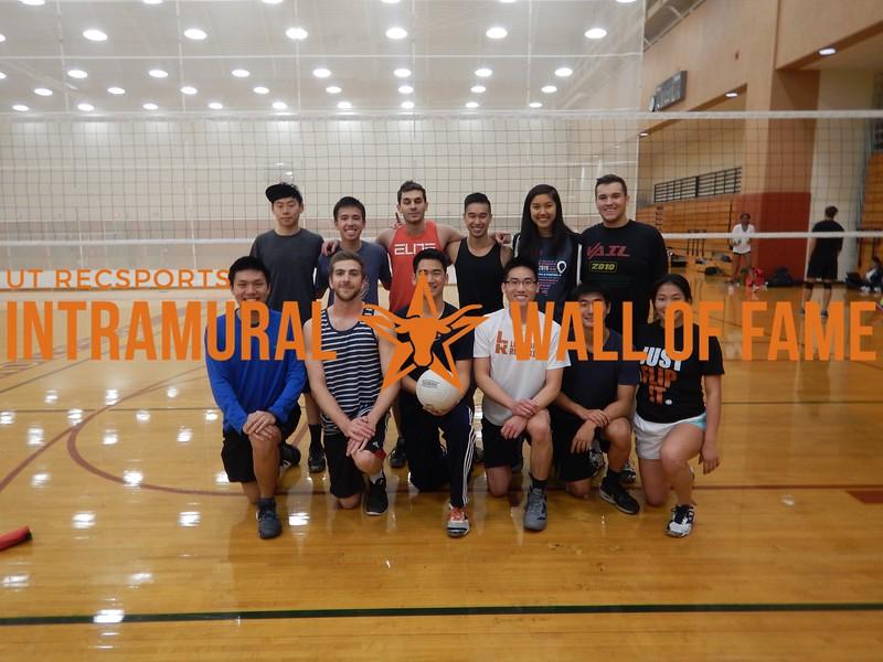 Fall 2015 Volleyball Men's Champion Block Heads