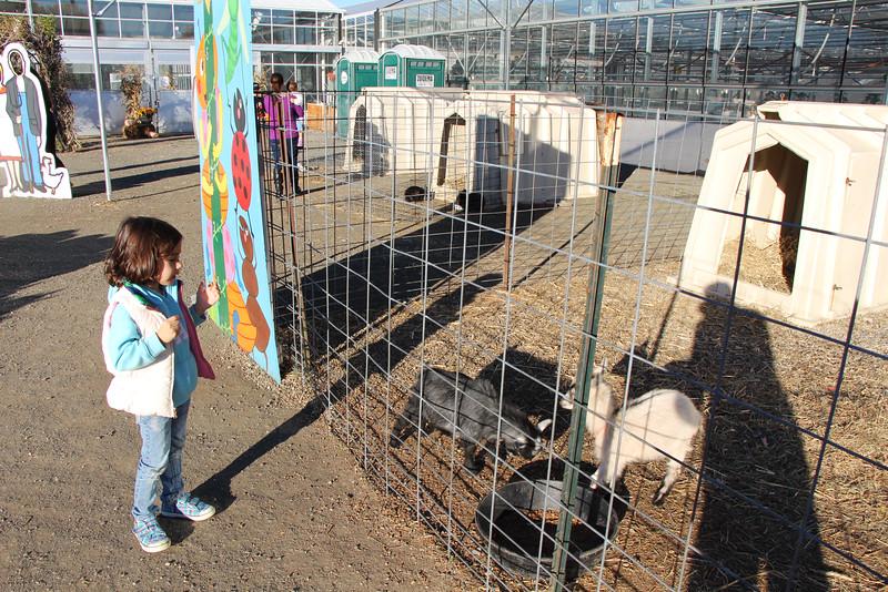 Secco Farm 079.JPG
