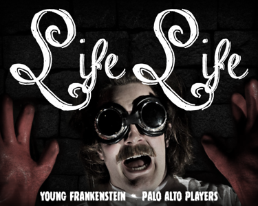 Young Frankenstein - Posters