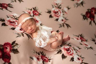 Scarlett Newborn Gallery