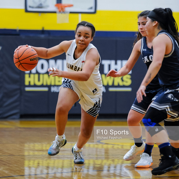 01.16.2019 - 201454-0500 - 2922 - 01.16 -  WBB Humber Hawks vs UTM Eagles.jpg