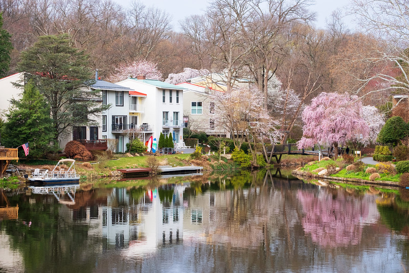 Springtime colors at Lake Anne