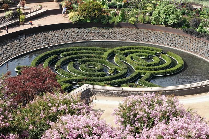DSC00171 Maze Flowers in FG.jpg