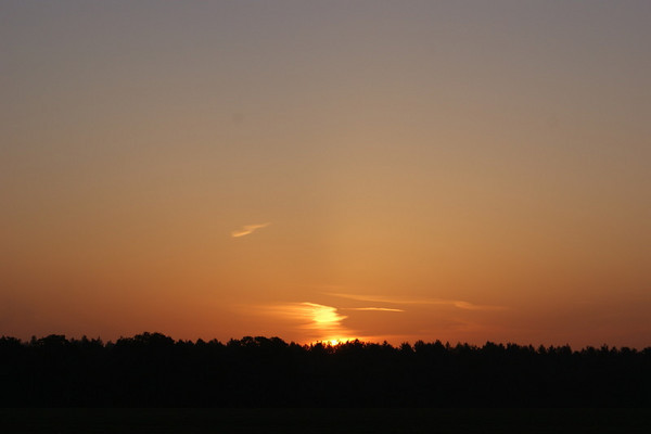 Sulham Sunrise