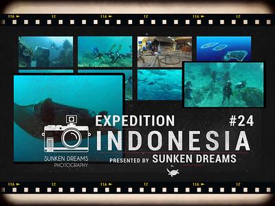 SDSDA Ex24 Indonesia