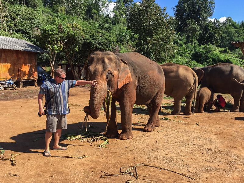 elephant-sanctuary-chiang-mai-19.jpg