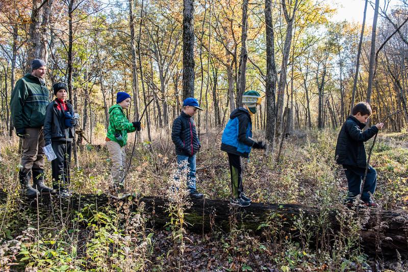 5 Cub Scouts on a log