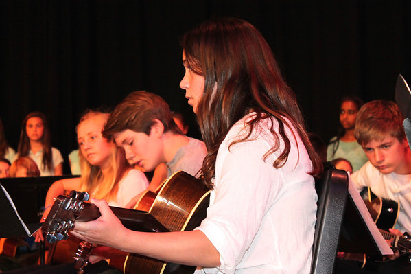 MS Arts in Action 2014