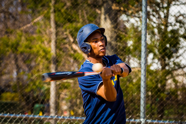 Baseball/Softball 2017