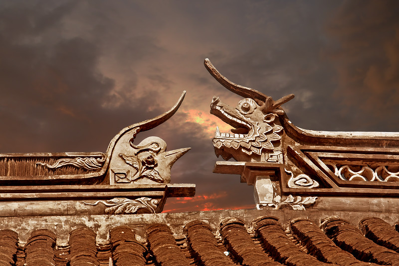dragon & bird frieze, Forbidden City, Beijing, China