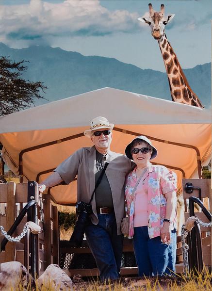 Safari Park 2018