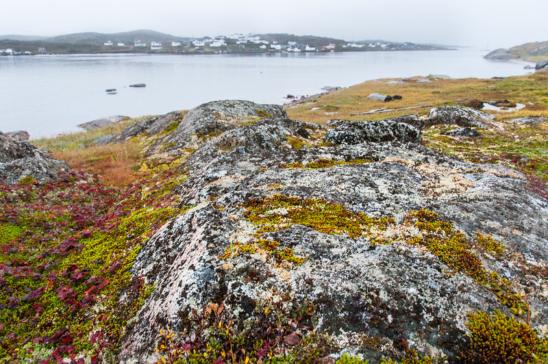 Rocky landscape in Red Bay, Canada