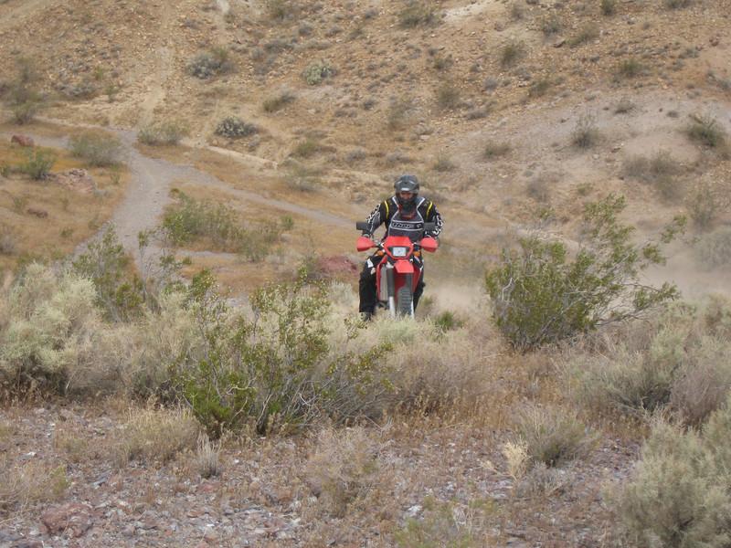 Mojave2009-06-06 11-59-06.JPG