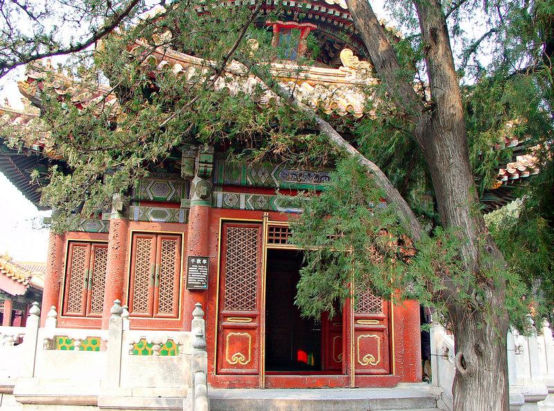 China2007_069_adj_l_smg.jpg