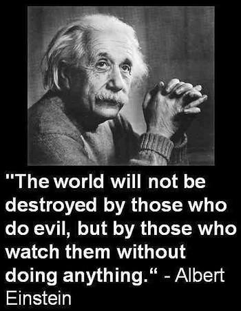 Quote_WorldNotDestroyedByEvilByDoingNada.jpg