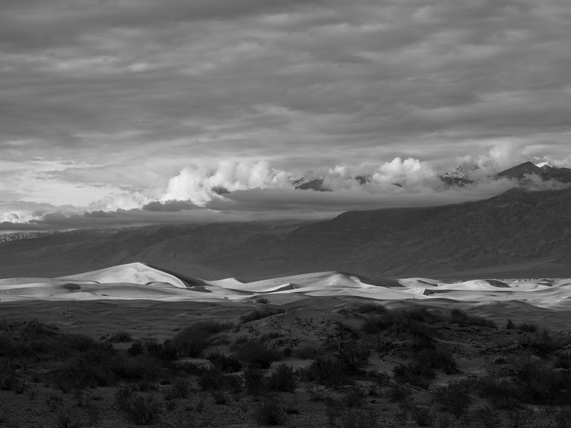 Mesquite Flat Dunes, Late Afternoon