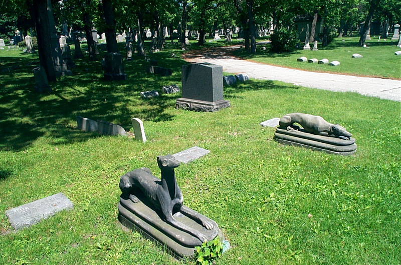 Ira Stein's Dogs of Death