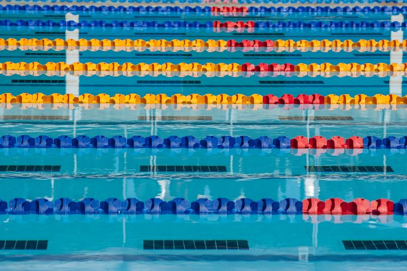 16Feb2016_MS Swimming Carnival_0673.jpg