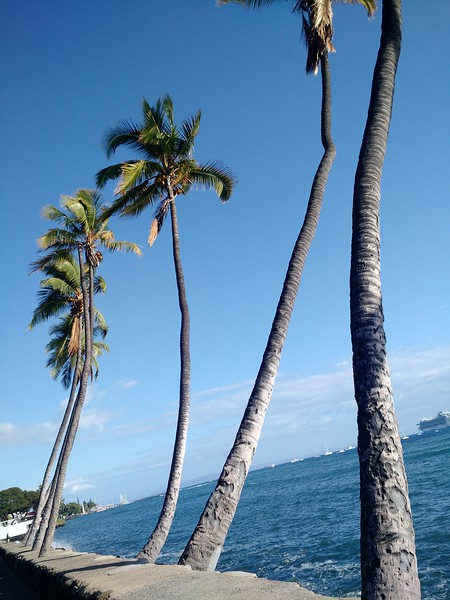 Last day, Maui: Exploring Lahaina, HI.