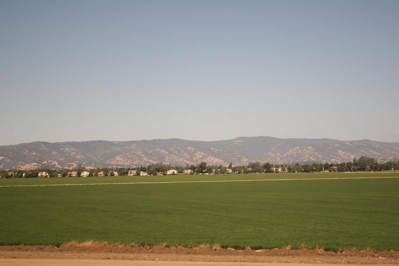 Irrigation in the desert