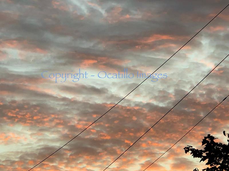 Sky Liners.jpg