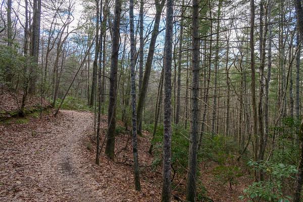 Explorer Loop Trail (#337)