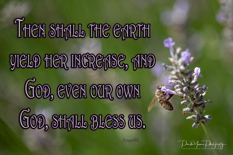 Psalms 67 6.jpg